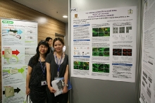 SBS Research Day 2012 cum Cancer and Inflammation 2012 Symposium (4-5 June 2012)_371