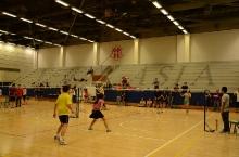 badminton_tournament_2014_11