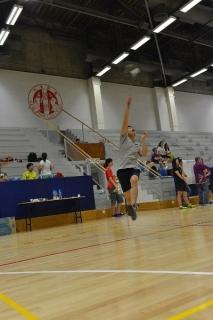 badminton_tournament_2014_4
